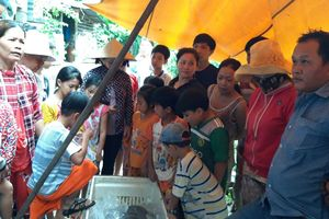 Cá 'khủng' quý hiếm được đưa ra Hà Nội phục vụ nghiên cứu khoa học