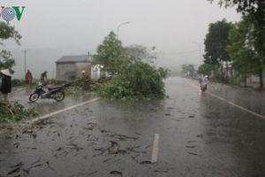 Mưa đá, lốc xoáy gây thiệt hại nặng nề tại Nghệ An, Hà Tĩnh