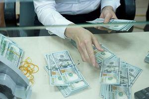 Ngân hàng Nhà nước: Sẵn sàng bán ngoại tệ để bình ổn tỷ giá