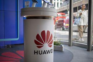 Âm thầm, Huawei có kế hoạch B trước khi bị Google chặn?