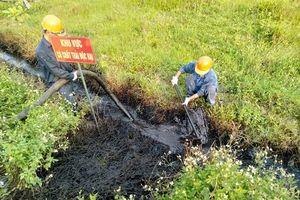 Công an điều tra vụ đổ trộm chất thải nguy hại tại Hải Phòng