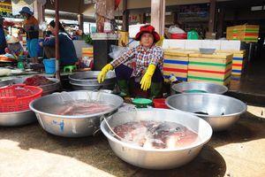 'Ngành thủy sản phát triển theo hướng hiện đại, bền vững và hài hòa'