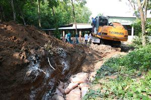 Bình Dương phát hiện 2 ổ dịch tả lợn châu Phi, tiêu hủy 1.000 con