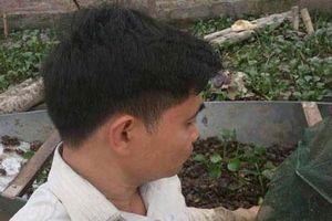 Hà Hội: Sau rắn mòng, chàng 'Quách Tĩnh' lại kiếm bộn tiền từ nuôi cua đồng