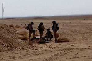 Các binh sĩ Nga lại xuất hiện trên sa mạc tỉnh Homs, Deir Ezzor