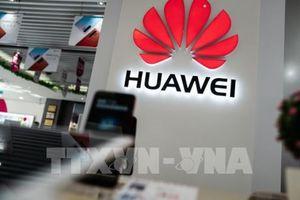 Huawei tỏ ra 'xem nhẹ' sắc lệnh hành pháp của Mỹ