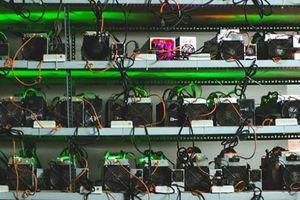 Nhà đầu tư bán gấp 'trâu cày' Bitcoin vì lỗ đậm