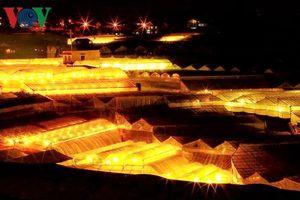 Các nhà vườn công nghệ cao Lâm Đồng 'méo mặt' vì giá điện tăng
