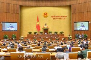 Quốc hội nghe báo cáo và thảo luận Dự án Luật Giáo dục (sửa đổi) và dự án Luật Kiến trúc