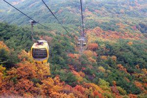 TPHCM là điểm đến đầu tiên của chiến dịch quảng bá 'Năm du lịch Daegu-Gyeongbuk 2020'