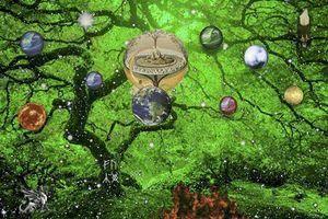 Bí ẩn muôn đời về loài cây linh thiêng chứa 9 thế giới
