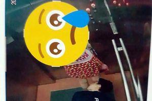 Thanh niên quỳ trong thang máy nhìn xuyên váy phụ nữ: Cộng đồng phẫn nộ, truy tìm