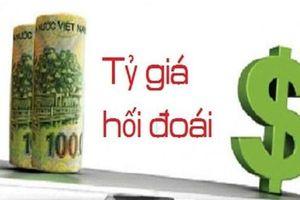 Tỷ giá liên tục nhảy vọt, đại diện Ngân hàng Nhà nước nói gì?