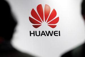 Huawei sẽ tung hệ điều hành riêng chạy ứng dụng Android