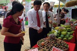 Đưa nông sản an toàn đến với người tiêu dùng Thủ đô