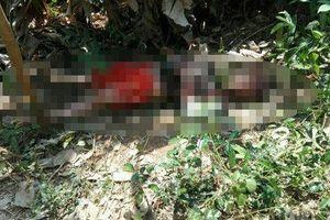 Tá hỏa phát hiện thi thể nam thanh niên trong vườn cây