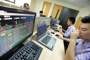 Cổ phiếu vốn hóa lớn tại Việt Nam dưới góc nhìn P/E