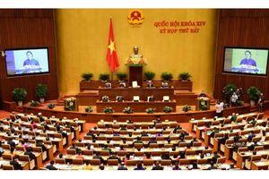 Đại biểu Quốc hội thảo luận tại tổ về kinh tế-xã hội