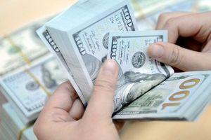 Giá USD ngày 22/5: Tỷ giá USD niêm yết lại đồng loạt giảm trong nước