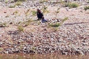 Năm học sinh bị đuối nước trên sông Gianh