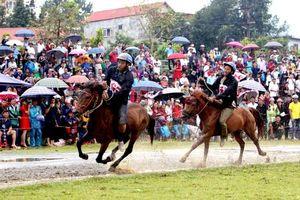 Festival độc đáo về đua ngựa trên cao nguyên trắng Bắc Hà