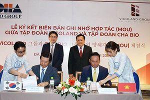 Xúc tiến dự án quần thể dịch vụ y tế trị giá 250 triệu USD tại miền Trung