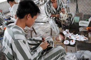 ĐBQH: Không phải trại giam nào cũng đủ điều kiện tổ chức cho phạm nhân lao động