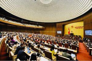 Quốc hội xem xét dự án Luật Phòng, chống tác hại của rượu, bia