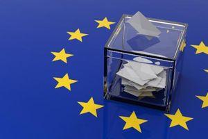 Cử tri châu Âu bầu cử Nghị viện nhiệm kỳ mới