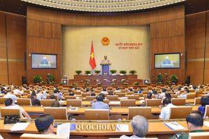 Quốc hội xem xét về dự án Luật Quản lý thuế (sửa đổi)
