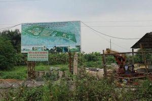 Dự án KĐT Hà Nội Westgate 'bỏ hoang' 10 năm, thành nơi thả bò