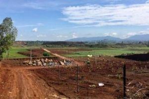 San lấp ruộng để phân lô bán nền: Không khắc phục sẽ thu hồi đất