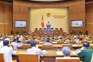 Hôm nay (24/5), Quốc hội nghe báo cáo và thảo luận về 3 dự án Luật