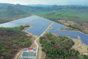 Vận hành nhà máy điện mặt trời hơn 1.000 tỷ đồng tại Bình Thuận, cung cấp sản lượng trên 76 triệu kWh/năm