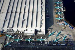 Hàng không Trung Quốc thiệt hại hơn 579 triệu USD vì sự cố Boeing 737 MAX