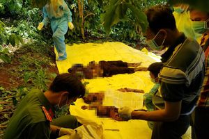 Rúng động, người phụ nữ sát hại 3 bà cháu rồi chôn xác phi tang