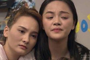 Biên kịch 'Về nhà đi con': Có người đã khóc khi chỉ mới bàn tình huống phim