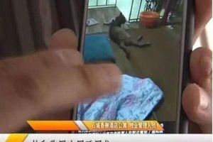 Thiếu nữ ở bẩn đến nỗi nhân viên vệ sinh phải đeo cả mặt nạ khử độc mới dám dọn dẹp