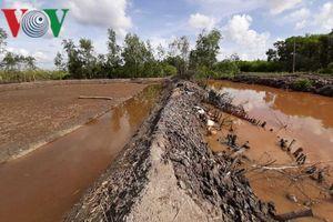 Gia đình Bí thư Đảng ủy xã ở Cà Mau khai thác đất trái phép