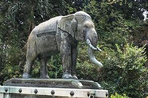 Chuyện về vườn thú 155 tuổi: Trăm năm Sở thú - Thảo Cầm viên