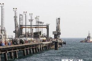 Trao đổi thương mại phi dầu mỏ giữa Iran-Mexico giảm mạnh