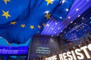 Phe cánh hữu trỗi dậy trong cuộc bầu cử Nghị viện châu Âu
