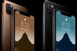 iPhone 2019 sẽ loại bỏ Touch ID, có iPhone SE 2 vào năm 2020