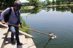 Cá chết trắng hồ điều hòa Nguyễn Du, bốc mùi hôi thối nồng nặc