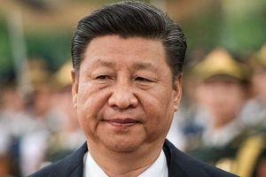 Chủ tịch Trung Quốc kêu gọi doanh nghiệp thế giới hợp tác về công nghệ cao