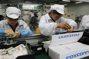 Các hãng công nghệ Đài Loan thất thu vì chiến tranh lạnh Mỹ - Trung