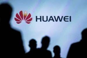 Nhân viên Huawei lo lắng về tương lai