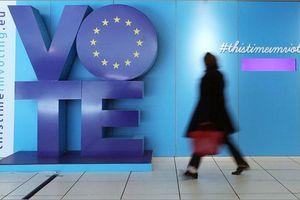 Bầu cử Nghị viện châu Âu: Các đảng cầm quyền Trung Âu giành thắng lợi