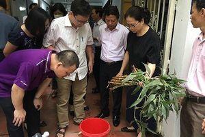 Nhiều phường, xã trọng điểm sốt xuất huyết ở Hà Nội bắt đầu gia tăng mật độ muỗi