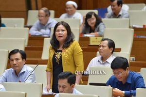 Đại biểu Quốc hội: QH duyệt 2 dự án không vướng gì, đừng đổ lỗi cho luật